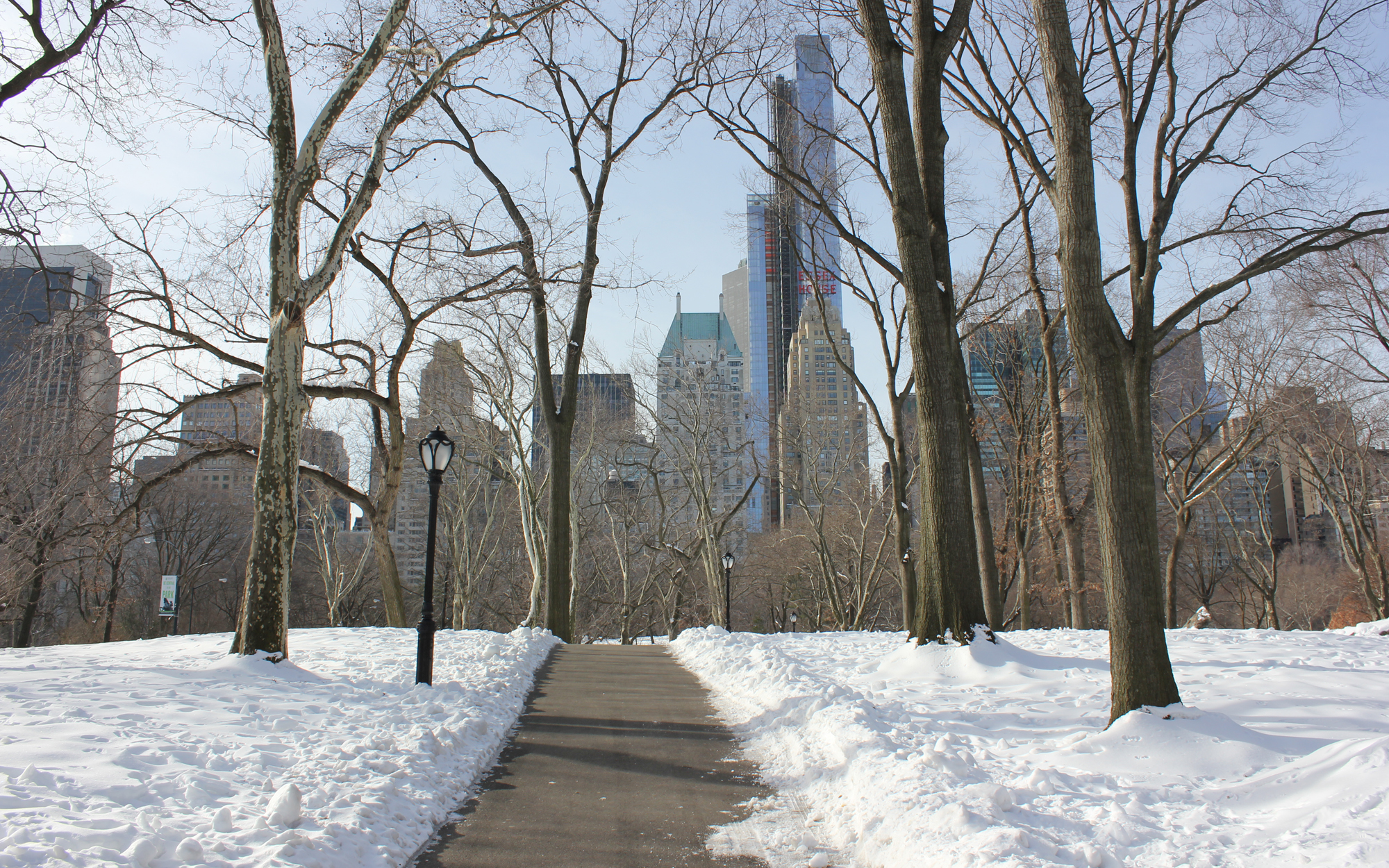 new_york_central_park_2_photography_matthew_pomorski_graphic_designer